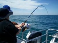 adelaide deep sea fishing