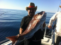adelaide fishing charter