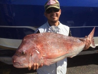 adelaide snapper fishing