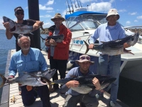 adelaide tuna fishing SA