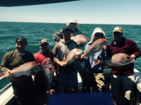 deep sea fishing charters adelaide