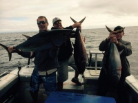 fishing tours SA