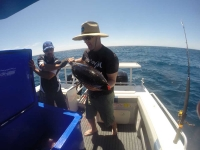 tuna fishing charter adelaide