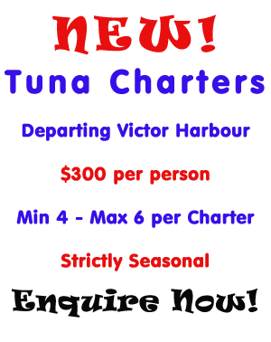 Tuna Fishing Trips Adelaide