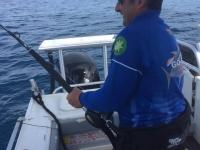 Barrel Tuna Fishing Port MacDonnell