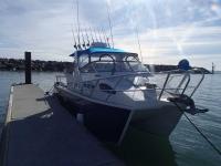 deep sea fishing adelaide 3