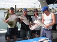 fishing charter boats adelaide