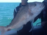 fishing trip adelaide