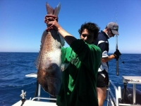 large fishing charters adelaide