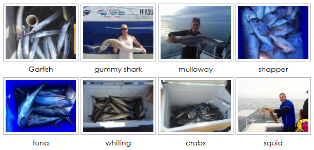 fishing trips charters adelaide sa